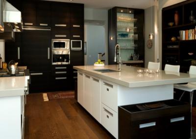 Angus Street Residence Interior Design Full Kitchen 2